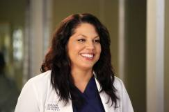 greys-anatomy_callie-torres