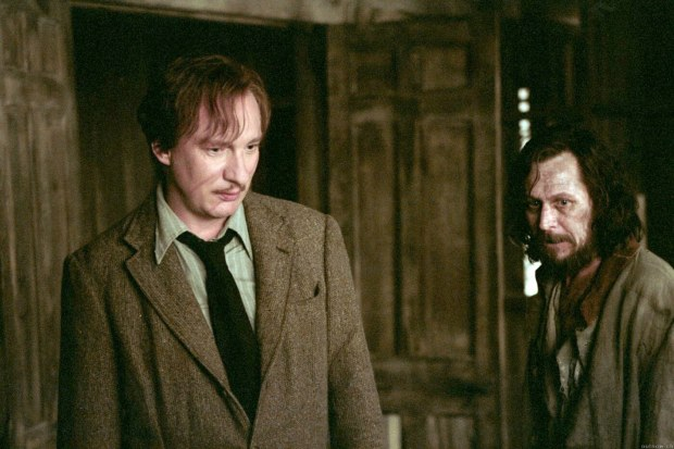 remus-lupin-gay