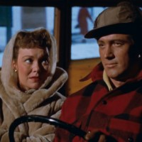 Rock Hudson in All That Heaven Allows: An Ode to the Simple Man